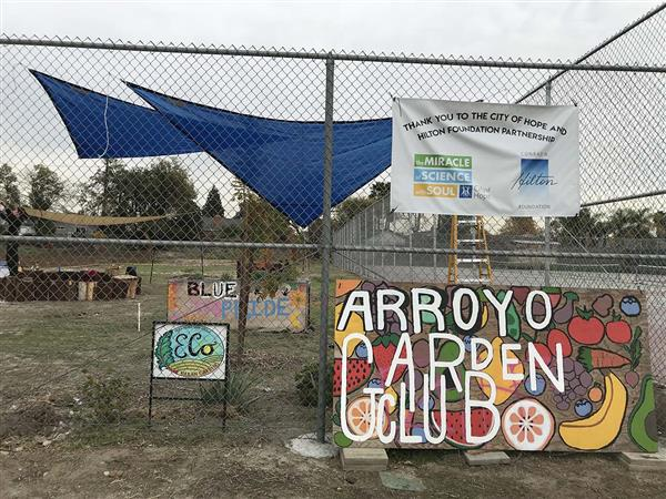 IN THE NEWS: Arroyo High Garden Grows Fresh Produce and Healthy Kids